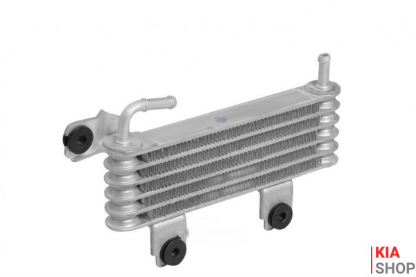 Радиатор масляный Hyundai Tucson/Kia Sportage (04-) 2.0i/2.0D  Luzar